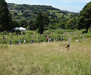 Looking down on surveyors and a wildflower walk in Stroud Cemetery Nature Reserve